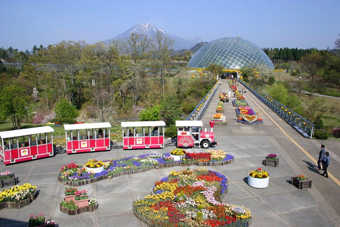 What is Tottori Prefctural Flower Park?